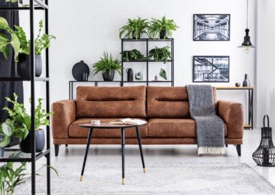 σαλόνι βαμμένο λευκό με μεγάλο καφέ δερμάτινο καναπέ με μαύρη διακόσμηση και πολλά φυτά